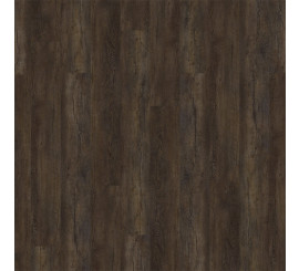 Elemental Isocore 811311 Arezzo Brown