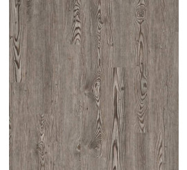 COREtec Wood Essentials 506 Corvallis Pine